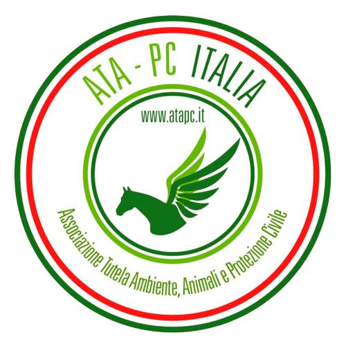 ATA PC Italia